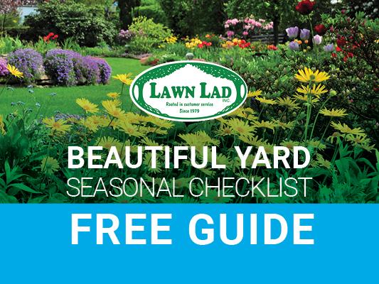 12 month landscape checklist