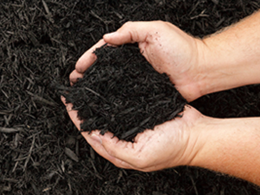 Why Mulch is Important